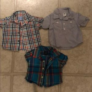 Baby boy short sleeved button downs